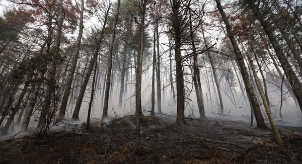 <div class='meta'><div class='origin-logo' data-origin='AP'></div><span class='caption-text' data-credit='AP Photo/John Bazemore'>A wildfire smolders after burning a hillside Tuesday, Nov. 15, 2016, in Clayton, Ga.</span></div>