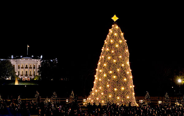 <div class='meta'><div class='origin-logo' data-origin='none'></div><span class='caption-text' data-credit='J. Scott Applewhite/AP Photo'>This Dec. 4, 2008 photo shows the National Christmas Tree, near the White House in Washington, illuminated during a ceremony.</span></div>