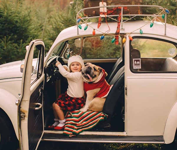 "<div class=""meta image-caption""><div class=""origin-logo origin-image none""><span>none</span></div><span class=""caption-text"">Pictures of pets getting festive for the holidays sent in by our Eyewitness News viewers! (Courtesy: Erin and Harvey/Facebook)</span></div>"
