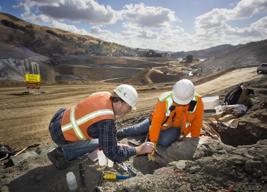 "<div class=""meta image-caption""><div class=""origin-logo origin-image ""><span></span></div><span class=""caption-text"">Paleontologists remove fossils near the Calaveras Dam Replacement Project Site.  An amazing treasure trove of fossils millions of years old are being discovered in Fremont. (Courtesy of San Francisco Public Utilities Commission)</span></div>"