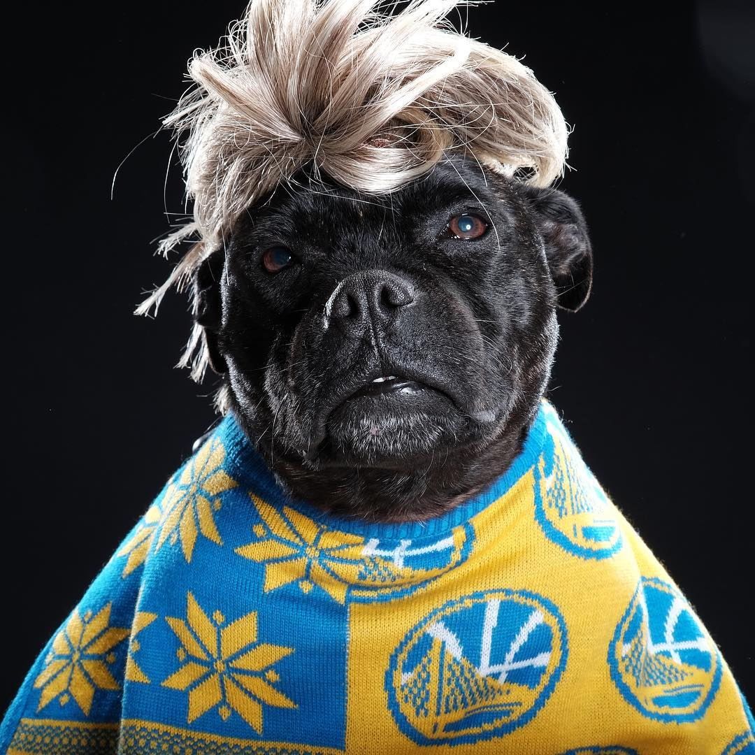 "<div class=""meta image-caption""><div class=""origin-logo origin-image none""><span>none</span></div><span class=""caption-text"">Dub Nation is showing Golden State pride by sending their photos to ABC7 with #DubsOn7. Go Warriors! (andrewwongphoto/Instagram)</span></div>"