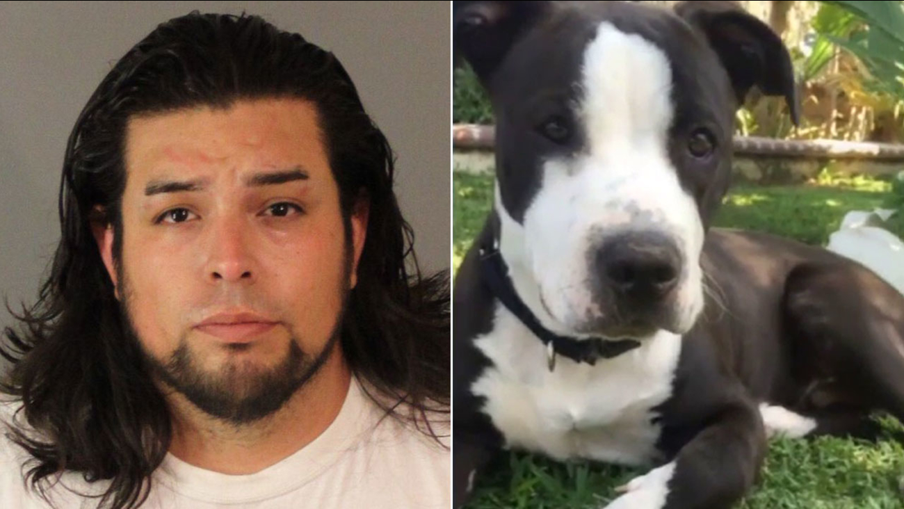 Suspect Rudy Jesus Barajas, 30, of Riverside, is accused of slitting the throat of his neighbor's pit bull shortly after the dog killed his poodle.