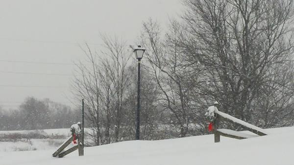"<div class=""meta image-caption""><div class=""origin-logo origin-image none""><span>none</span></div><span class=""caption-text"">Eyewitness pictures of the snow</span></div>"