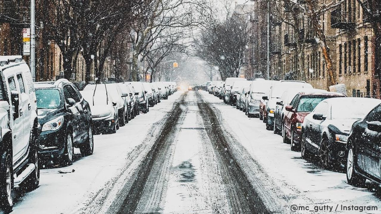 SNOW TOTALS: How Much Snow Fell In New York, New Jersey