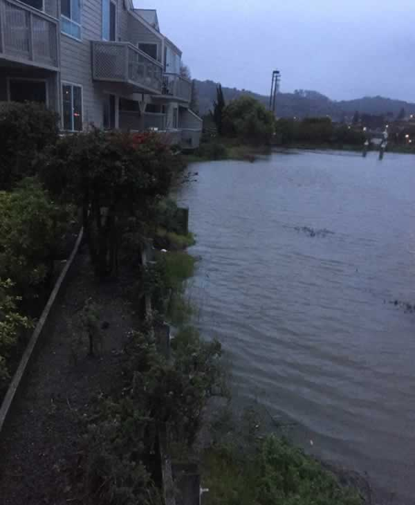 <div class='meta'><div class='origin-logo' data-origin='none'></div><span class='caption-text' data-credit='Photo submitted to KGO-TV by abuttars/Twitter'>Water breaches the bank and rises up to the buildings in Corte Madera, Calif. on Sunday, January 8, 2017.</span></div>