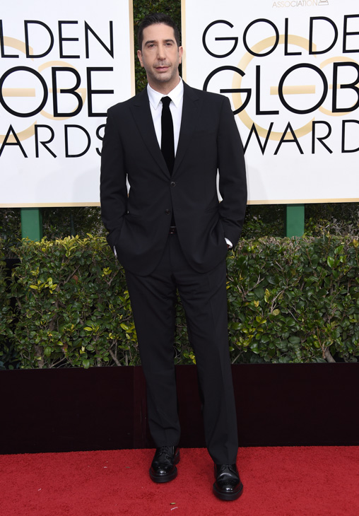 <div class='meta'><div class='origin-logo' data-origin='none'></div><span class='caption-text' data-credit='Jordan Strauss/Invision/AP'>David Schwimmer arrives at the 74th annual Golden Globe Awards at the Beverly Hilton Hotel on Sunday, Jan. 8, 2017, in Beverly Hills, Calif.</span></div>