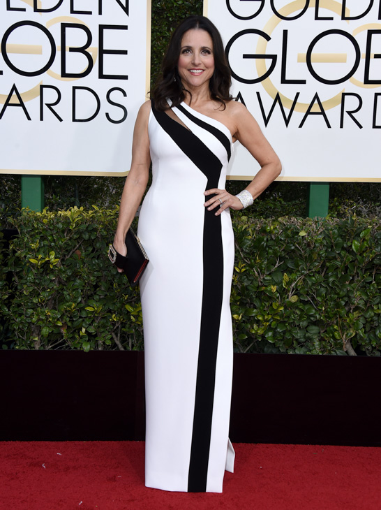 <div class='meta'><div class='origin-logo' data-origin='none'></div><span class='caption-text' data-credit='Jordan Strauss/Invision/AP'>Julia Louis-Dreyfus arrives at the 74th annual Golden Globe Awards at the Beverly Hilton Hotel on Sunday, Jan. 8, 2017, in Beverly Hills, Calif.</span></div>