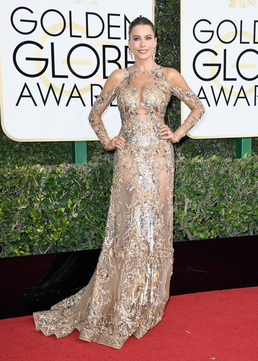 <div class='meta'><div class='origin-logo' data-origin='none'></div><span class='caption-text' data-credit='Frazer Harrison/Getty Images'>Actress Sofia Vergara attends the 74th Annual Golden Globe Awards at The Beverly Hilton Hotel on January 8, 2017 in Beverly Hills, California.</span></div>