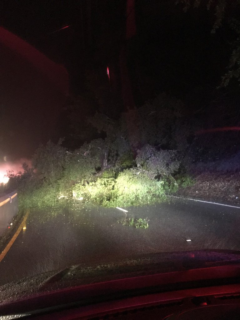 <div class='meta'><div class='origin-logo' data-origin='none'></div><span class='caption-text' data-credit='mboylan/Twitter'>A tree fell on a car on State Route 17 South near Santa Cruz on Jan. 8, 2017.</span></div>