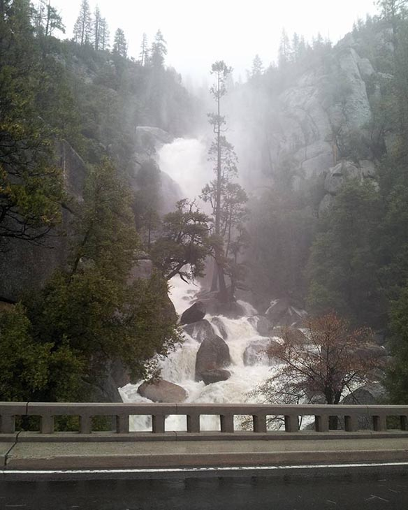 <div class='meta'><div class='origin-logo' data-origin='none'></div><span class='caption-text' data-credit='Yali Montiel'>Drive into Yosemite National Park</span></div>