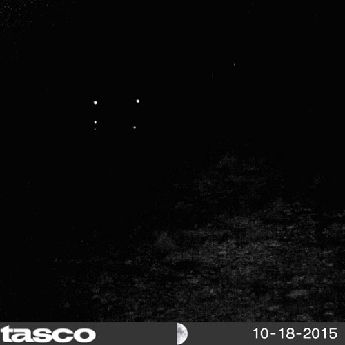 <div class='meta'><div class='origin-logo' data-origin='none'></div><span class='caption-text' data-credit='MUFON'>Kind of dark, but these strange lights were caught on a deer cam in Uvalde in January 2016.</span></div>