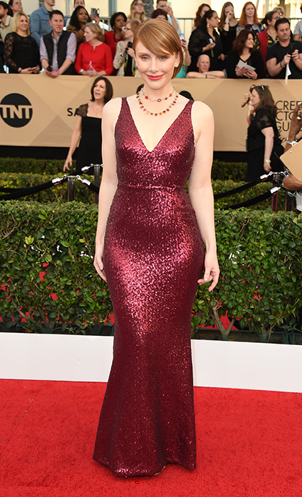 "<div class=""meta image-caption""><div class=""origin-logo origin-image none""><span>none</span></div><span class=""caption-text"">Bryce Dallas Howard arrives at the 23rd annual Screen Actors Guild Awards at the Shrine Auditorium & Expo Hall on Sunday, Jan. 29, 2017, in Los Angeles. (Jordan Strauss/Invision/AP)</span></div>"
