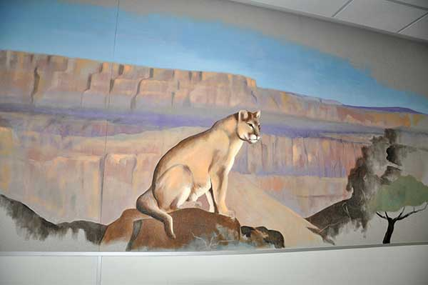 <div class='meta'><div class='origin-logo' data-origin='none'></div><span class='caption-text' data-credit='Walnut Valley Unified School District'>A mural painted by volunteer artist Cornelis Greive is seen at Chaparral Middle School in Diamond Bar.</span></div>