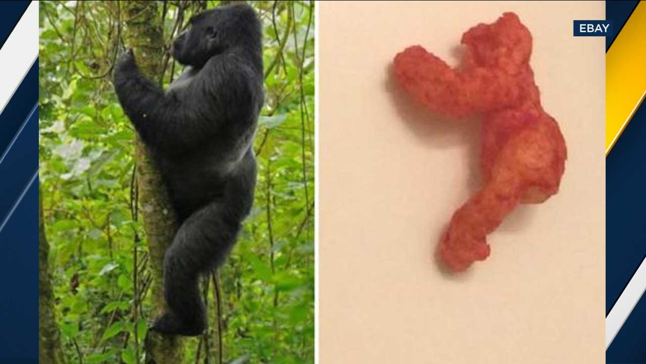 A Cheeto that bears a resemblance to slain gorilla Harambe was auctioned off for nearly $100,000 on eBay.