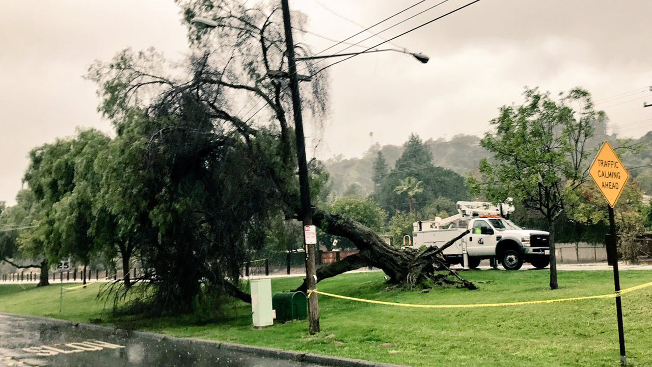 A tree falls into power lines in Duarte as storms sweep through Southern California on Friday, Feb. 17, 2017.