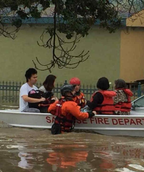 <div class='meta'><div class='origin-logo' data-origin='none'></div><span class='caption-text' data-credit='KGO-TV'>San Jose firefighters rescue dozens of residents by boat in flood waters in the Nordale neighborhood on Tuesday February 21, 2017.</span></div>