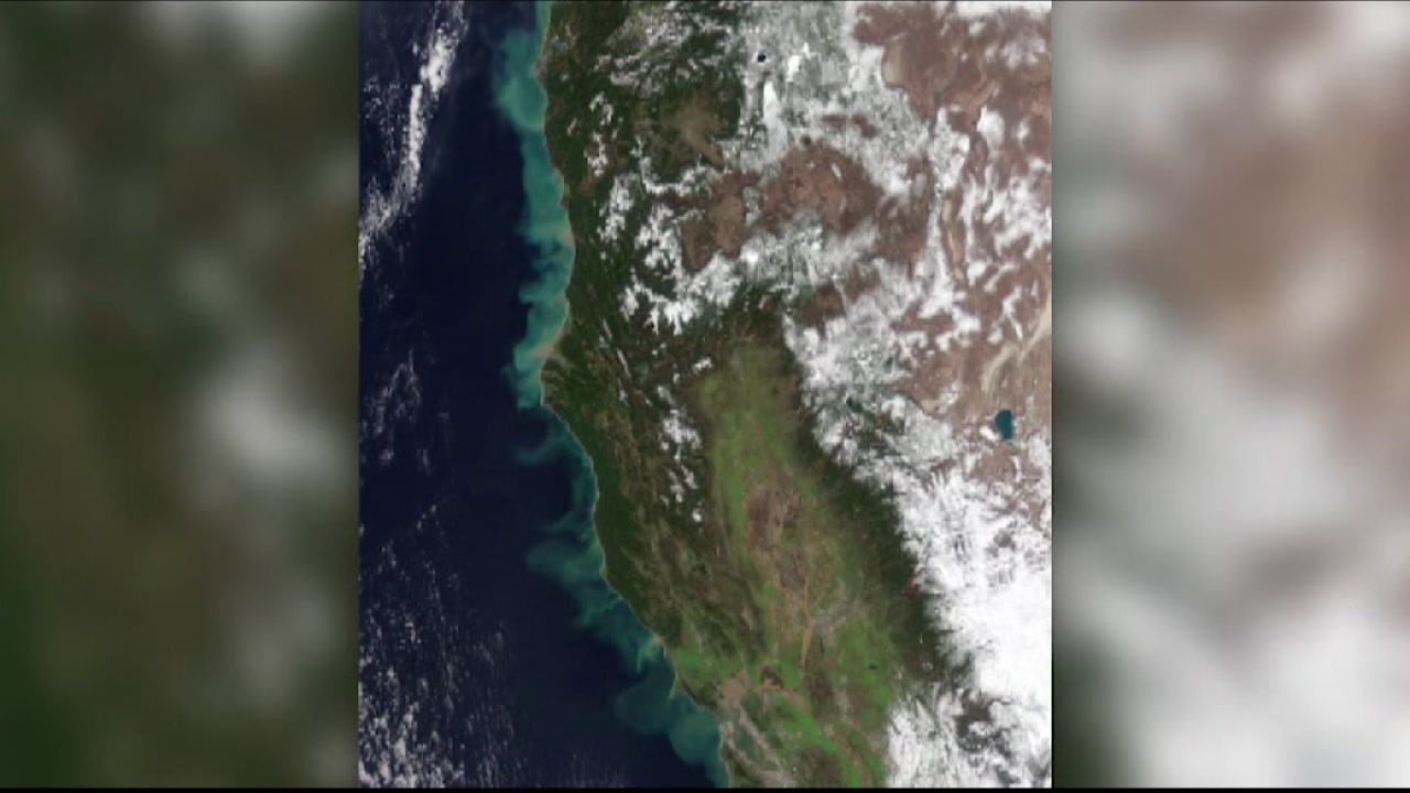 This satellite photo from NASA's Earth Observatory shows the affect big winter storms have had on California.