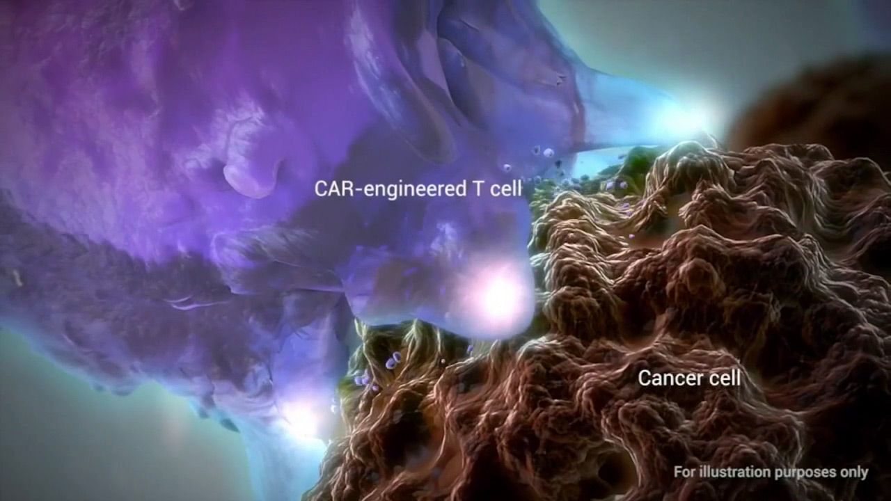 A new gene therapy is helping to turn blood cells into cancer fighters.