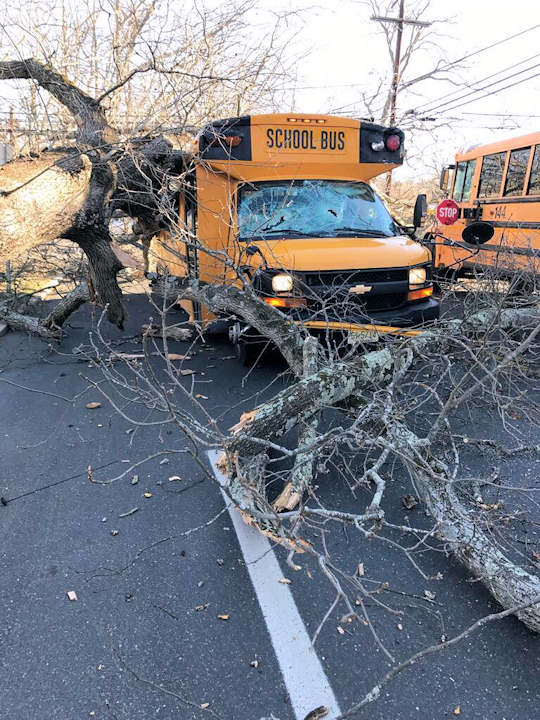 <div class='meta'><div class='origin-logo' data-origin='none'></div><span class='caption-text' data-credit=''>No injuries were reported when a large tree crashed down on school buses in Lakewood, New Jersey</span></div>