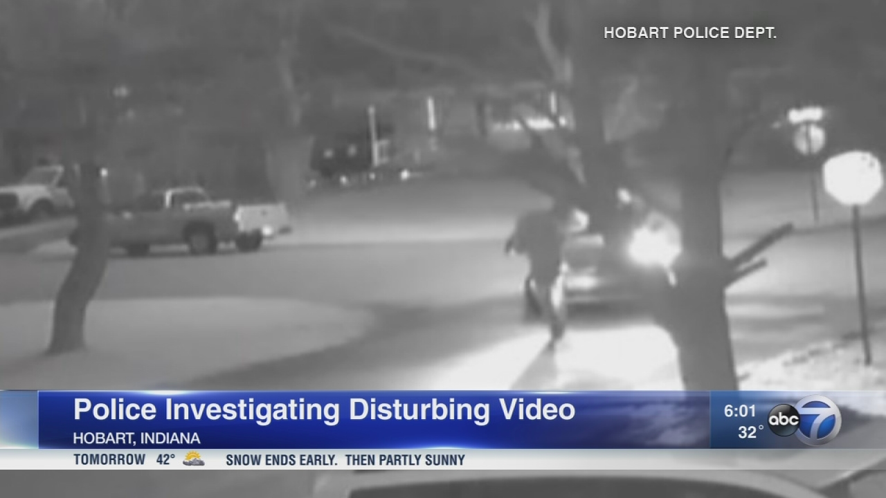 Police investigating video showing woman forced back into car