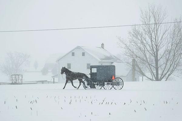 "<div class=""meta image-caption""><div class=""origin-logo origin-image none""><span>none</span></div><span class=""caption-text"">A horse and buggy drive through a winter snow storm, Tuesday, March 14, 2017, in Salisbury, Pa. (Matt Slocum/AP Photo)</span></div>"