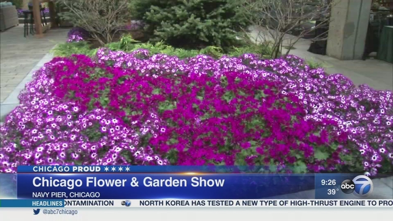 Spring Comes Early At The Chicago Flower Garden Show Abc7 Chicago