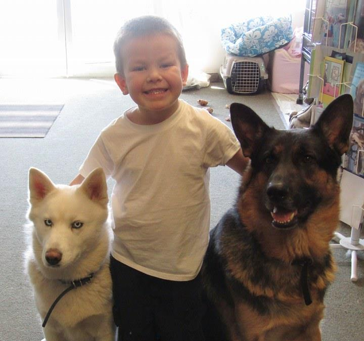"<div class=""meta image-caption""><div class=""origin-logo origin-image none""><span>none</span></div><span class=""caption-text"">A little boy appears with his two dogs in this undated image. (Photo submitted to KGO-TV by Elaine Figg-Hoblyn/Facebook)</span></div>"