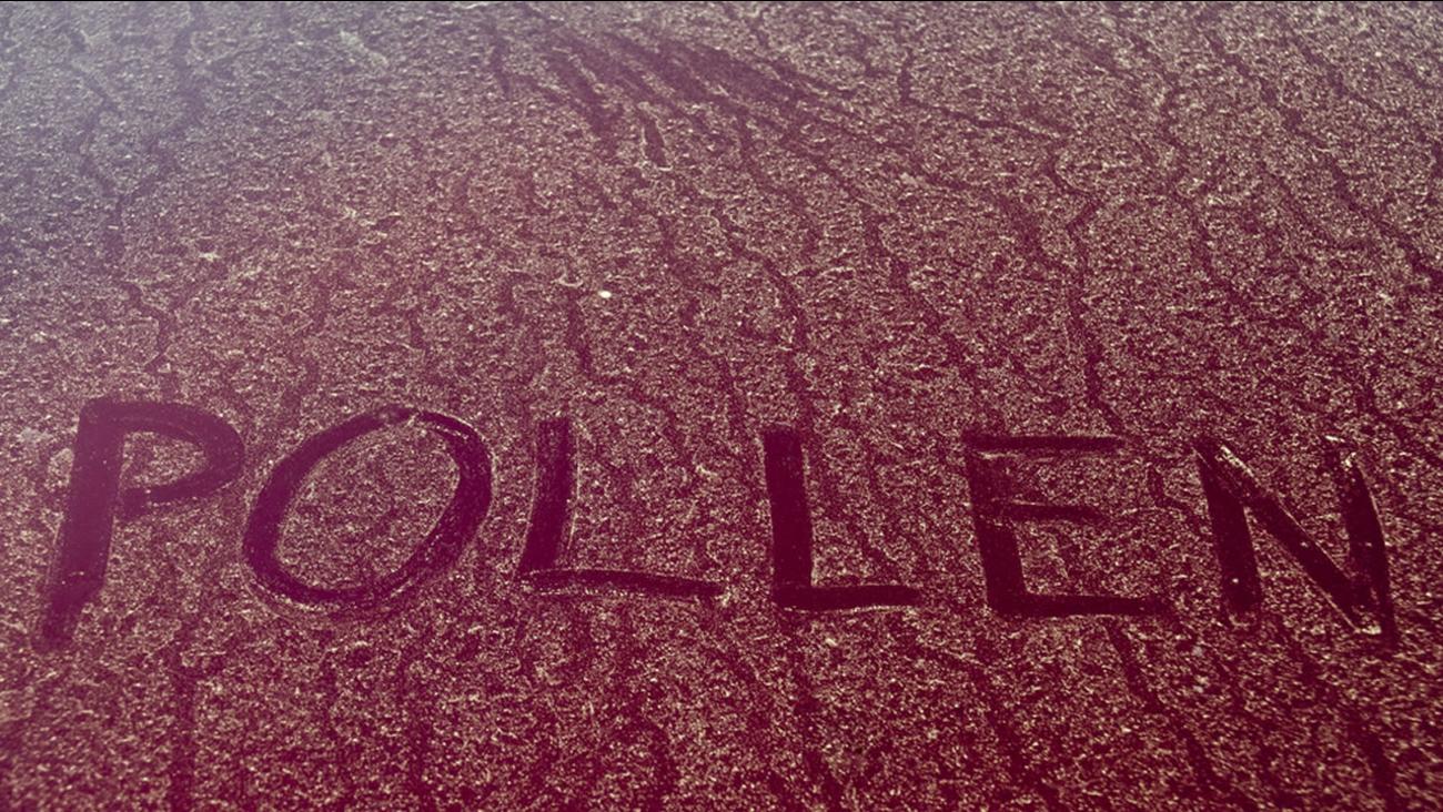 It's pollen season.