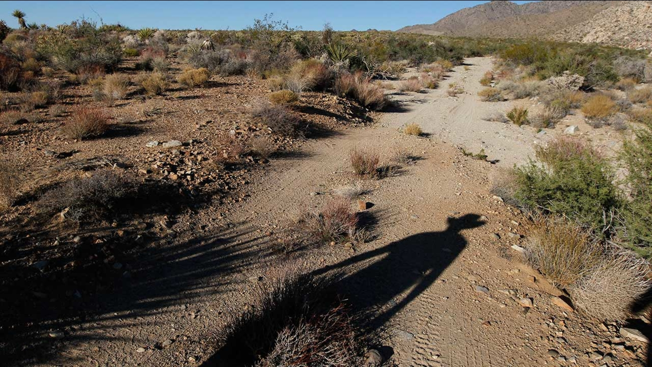 In this 2011 photo, Seth Shteir, a California Desert Field Representative for the National Parks Conservation Association, hikes to a spring at the Mojave National Preserve.