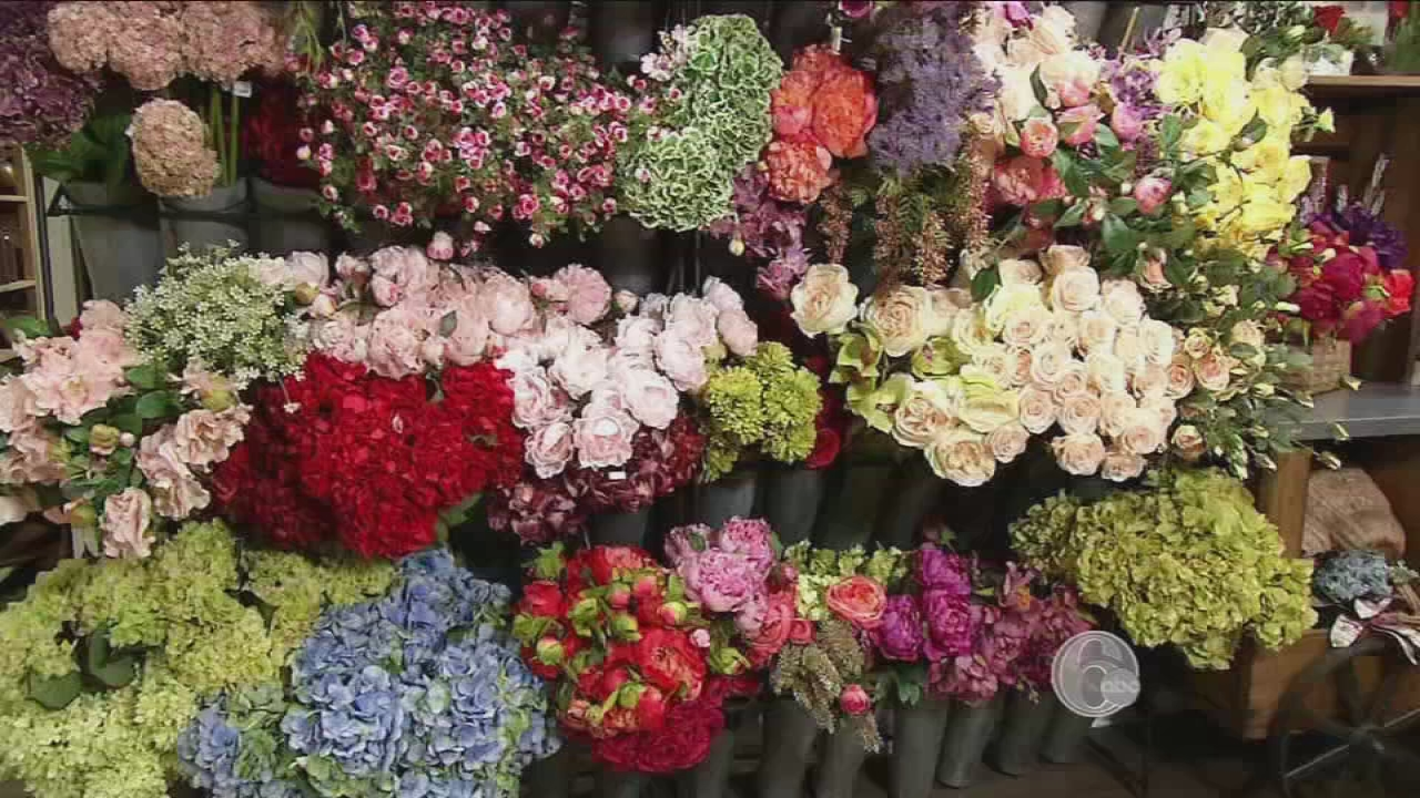Fyi philly flowers that never fade 6abc izmirmasajfo