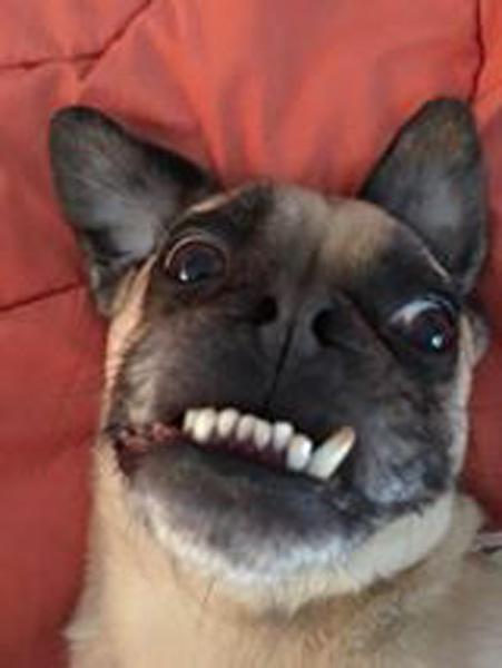 """<div class=""""meta image-caption""""><div class=""""origin-logo origin-image none""""><span>none</span></div></div>"""