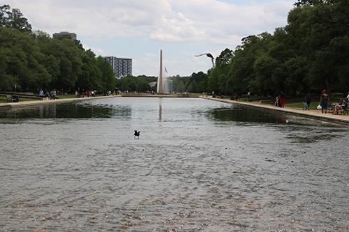 <div class='meta'><div class='origin-logo' data-origin='KTRK'></div><span class='caption-text' data-credit='Danny Clemens'>A reflecting pool sits adjacent to the Sam Houston statue.</span></div>