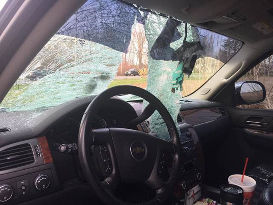 "<div class=""meta image-caption""><div class=""origin-logo origin-image wls""><span>WLS</span></div><span class=""caption-text"">A turkey crashed into a vehicle in Danville, Ind., on April 14, 2017. (Danville Police Department)</span></div>"