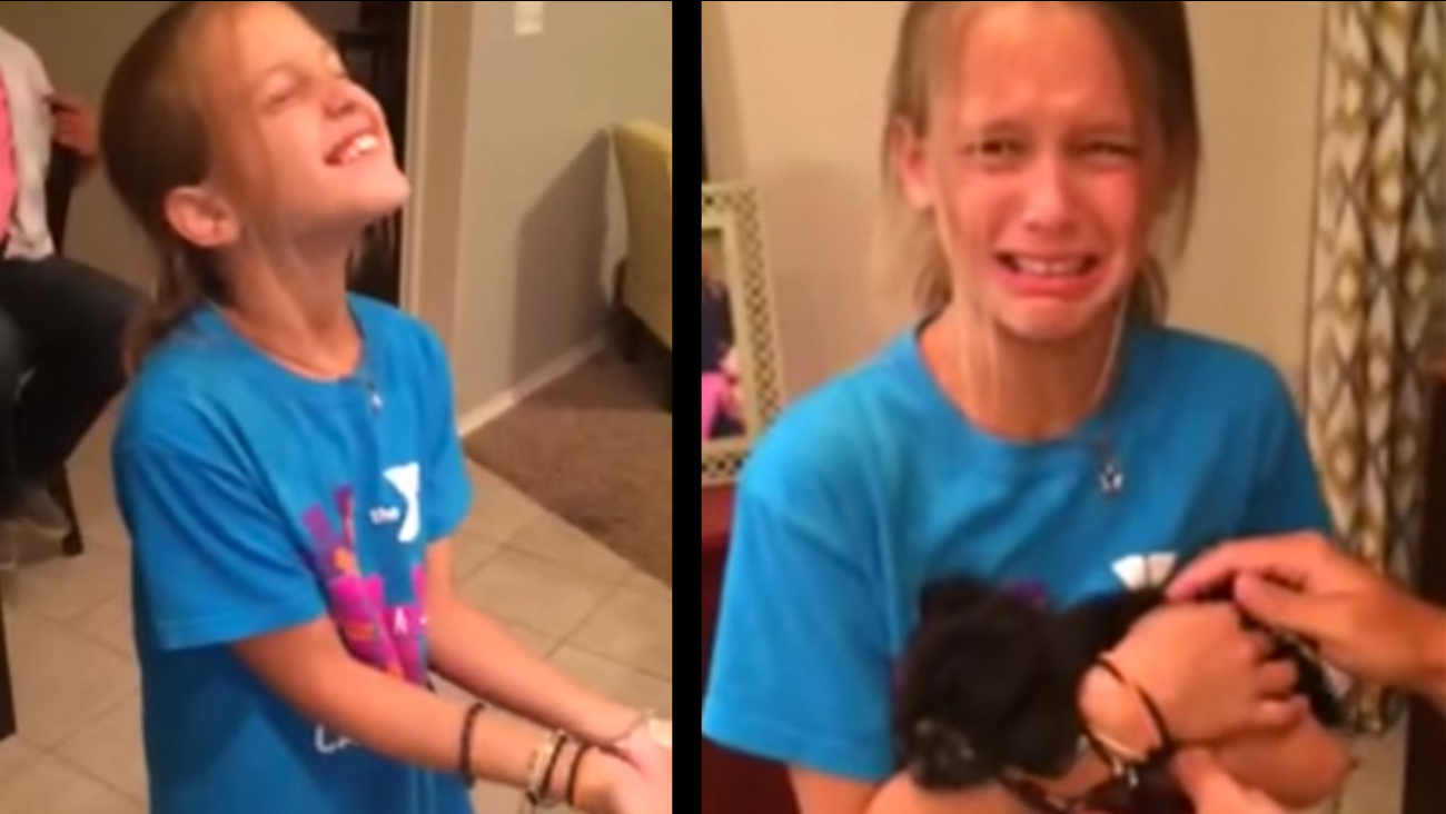 Girl So Overwhelmed By Puppy Gift She Breaks Down Crying 6abccom