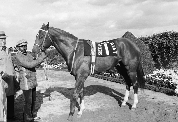 <div class='meta'><div class='origin-logo' data-origin='none'></div><span class='caption-text' data-credit='AP Photo/Dave Pickoff'>Triple Crown winner Secretariat, is shown at Aqueduct Rack Track in New York, Nov. 6, 1973, as the three-year-old colt, nicknamed &#34;Super Red&#34; by his fans, made a final appearance.</span></div>