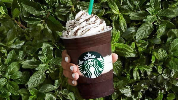 Starbucks' Midnight Mint Mocha Frappuccino is seen in this undated image.