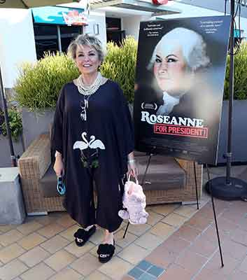 <div class='meta'><div class='origin-logo' data-origin='Creative Content'></div><span class='caption-text' data-credit='David Livingston/Getty'>Actress Roseanne Barr attends a photo call for Roseanne Barr's 'Roseanne for President!' at Sundance Sunset Cinema on July 1, 2016 in Los Angeles, California.</span></div>