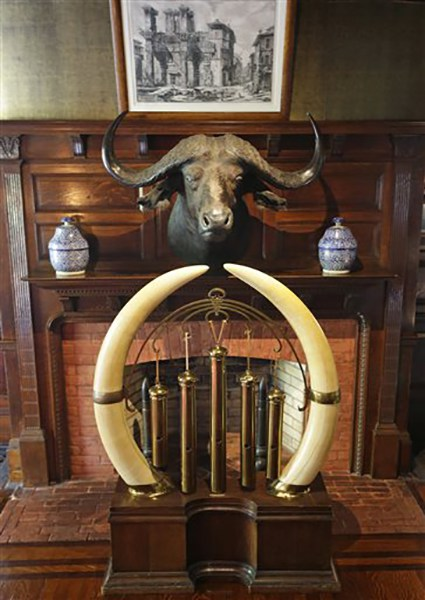 """<div class=""""meta image-caption""""><div class=""""origin-logo origin-image ap""""><span>AP</span></div><span class=""""caption-text"""">An African buffalo head hangs above the mantle over a fireplace, while a dinner gong decorated with Kenyan elephant tusks sit in the hallway at the entrance to Sagamore Hill (AP Photo/Kathy Willens)</span></div>"""