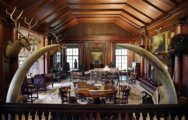 """<div class=""""meta image-caption""""><div class=""""origin-logo origin-image ap""""><span>AP</span></div><span class=""""caption-text"""">Elk and bison heads along with mementos President Theodore Roosevelt received adorn the North Room in his """"trophy room"""" at Sagamore Hill, his """"Summer White House"""" in Oyster Bay, NY (AP Photo/Kathy Willens)</span></div>"""