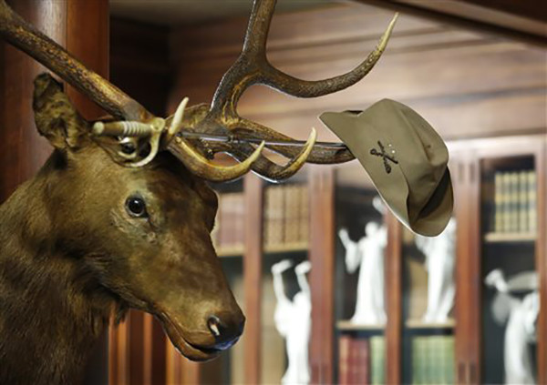 """<div class=""""meta image-caption""""><div class=""""origin-logo origin-image ap""""><span>AP</span></div><span class=""""caption-text"""">President Theodore Roosevelt's Rough Rider hat hangs on the horns of an elk head shot by the nation's 26th president in his trophy room at Sagamore Hill in Oyster Bay, N.Y. (AP Photo/Kathy Willens)</span></div>"""