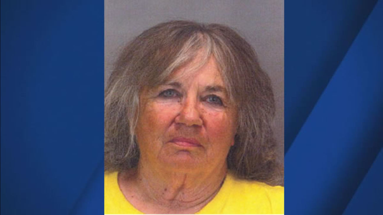 Police are searching for 77-year-old Diana Kozlowski, last seen on Thursday, May 25, 2017 in San Jose, Calif.