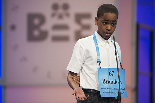 "<div class=""meta image-caption""><div class=""origin-logo origin-image ap""><span>AP</span></div><span class=""caption-text"">Brandon Anderson of Mount Vernon, N.Y. misspells his word during the 90th Scripps National Spelling Bee in Oxon Hill, Md., Wednesday, May 31, 2017. (AP Photo/Cliff Owen)</span></div>"