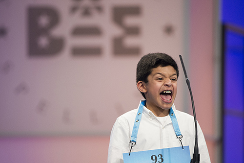 "<div class=""meta image-caption""><div class=""origin-logo origin-image ap""><span>AP</span></div><span class=""caption-text"">Arin Bhandari, 12 of West Haven, Conn. correctly spells his word during the 90th Scripps National Spelling Bee in Oxon Hill, Md., Wednesday, May 31, 2017. (AP Photo/Cliff Owen)</span></div>"