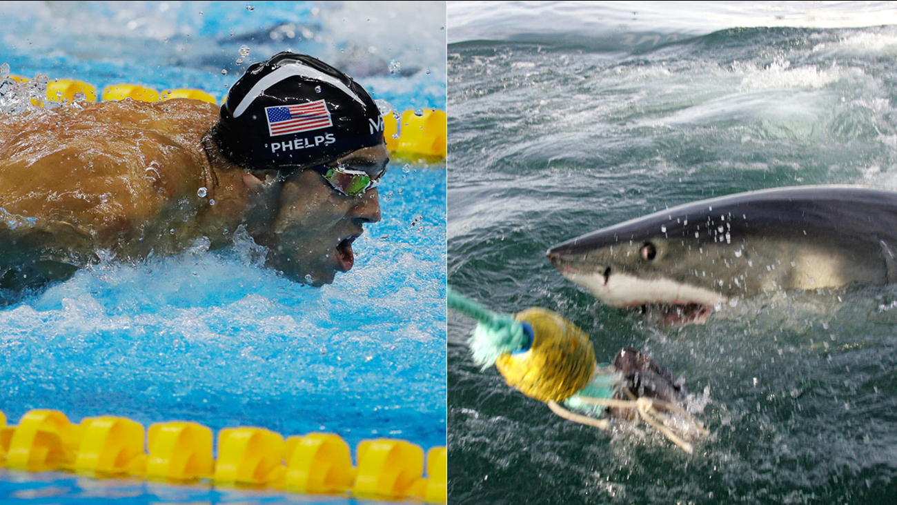 "Discovery Channel's list of ""Shark Week"" programming next month includes a July 23 show titled ""Phelps vs. Shark: Great Gold vs. Great White."""