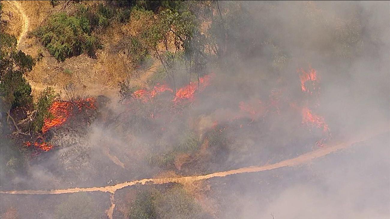 A brush fire burned in Elysian Park on Thursday, July 6, 2017.