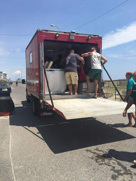 "<div class=""meta image-caption""><div class=""origin-logo origin-image none""><span>none</span></div><span class=""caption-text"">The Sea Isle Beach Patrol shared photos of multiple people rolling the dolphin onto a sling and transferring it to a waiting vehicle. (Sea Isle Beach Patrol)</span></div>"