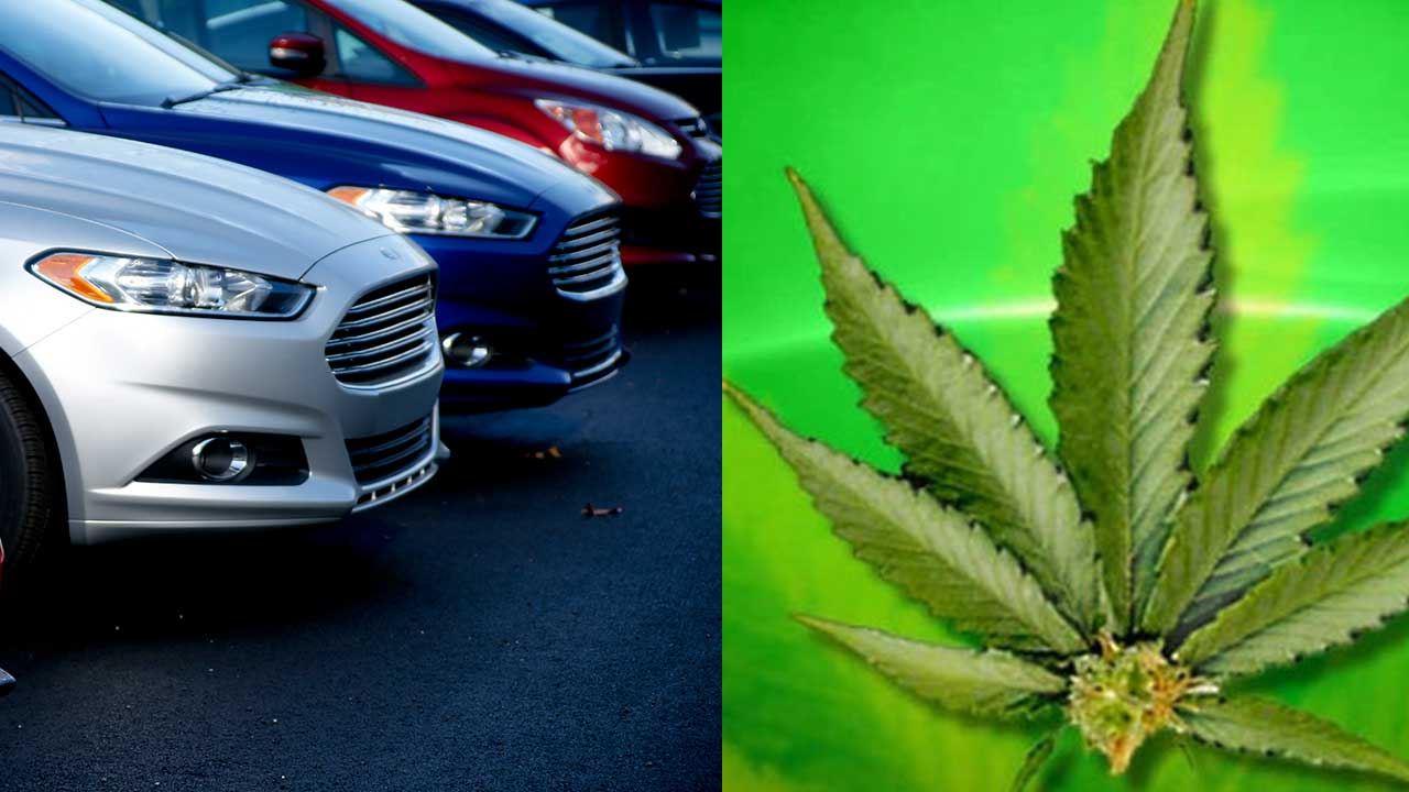 $1 million in marijuana found in brand new Ford Fusions