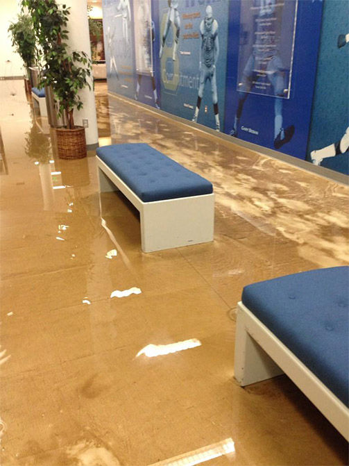 "<div class=""meta image-caption""><div class=""origin-logo origin-image ""><span></span></div><span class=""caption-text"">Water flooded into the meeting rooms, as well. (miss_alexpham / Twitter)</span></div>"