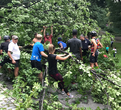 <div class='meta'><div class='origin-logo' data-origin='none'></div><span class='caption-text' data-credit='@erinade / Twitter'>Good Samaritans help the woman who was trapped underneath the fallen tree in Central Park.</span></div>
