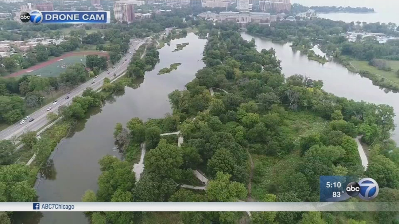 Obama Library landscapers look to South Side community gardens for inspiration